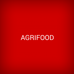 Icon Agrifood