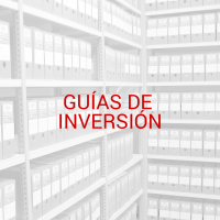 Icono Guias Inversion2